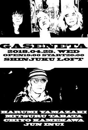 gaseneta180425.jpg